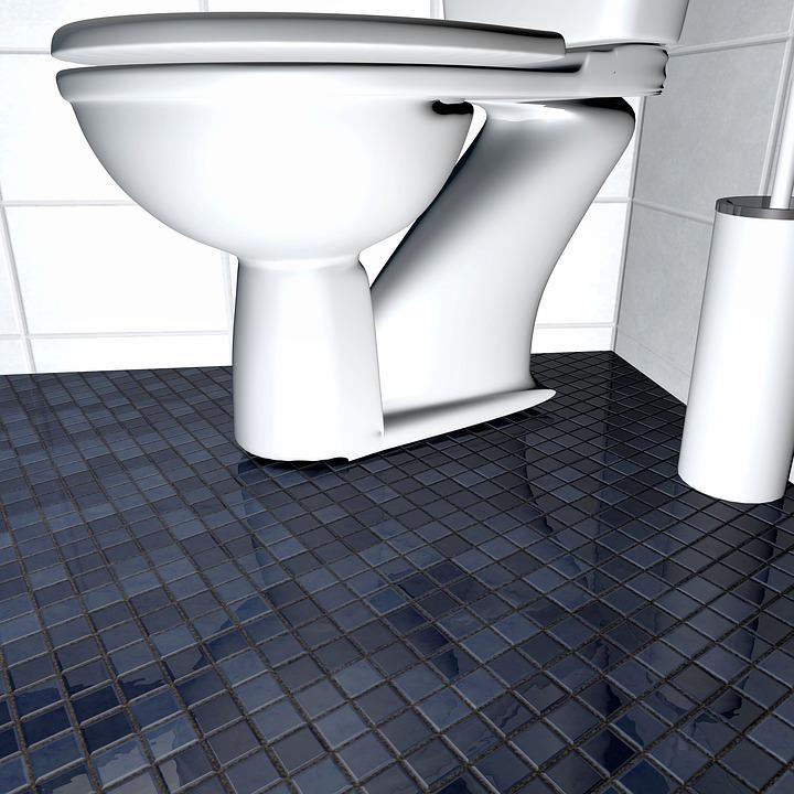 toilet badkamer