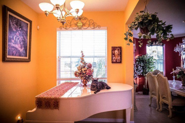 interieur warme kleuren