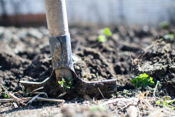 De leukste tuintrends voor zomer 2020